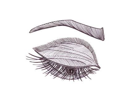 black eye: Drawn eye. Graphic style. Black pen.