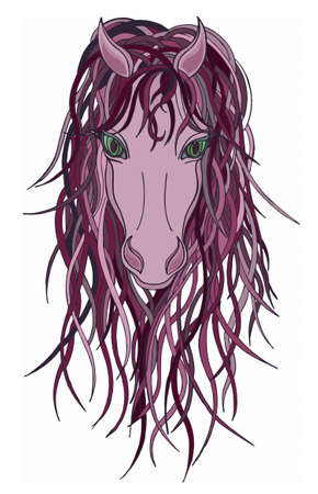 mane: Beautiful Horse with color mane.