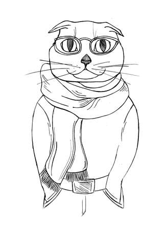 anthropomorphic: cat glasses and a scarf.fashion anthropomorphic character of cat dressed up in urban style. Stock Photo