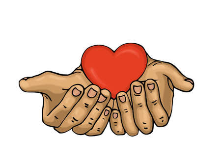 Red heart in the hands. Palms open. Drawn on a white background