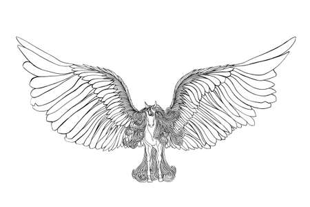 mane: Beautiful Horse with mane and wings.Pegasus. Drawning by pen .Close-up