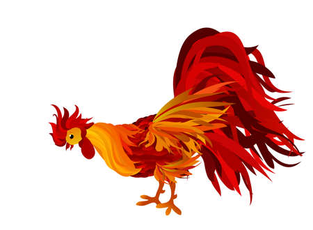 looking down: Rooster looking down. Vector. Red. Symbol 2017. Isolated Cockerel on a white background
