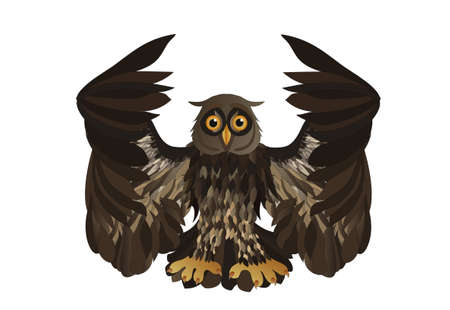 graphic illustration: Graphic illustration of flying owl. Vector illustration.