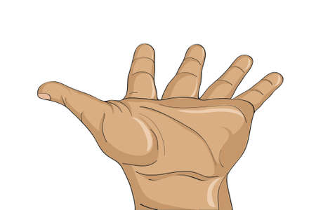 alms: Gesture open palm. Hand gives or receives. Vector illustration on white background. Empty space for advertising Illustration