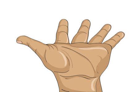 Gesture paume ouverte. Main donne ou reçoit. Vector illustration sur fond blanc. L'espace vide pour la publicité Banque d'images - 69253579