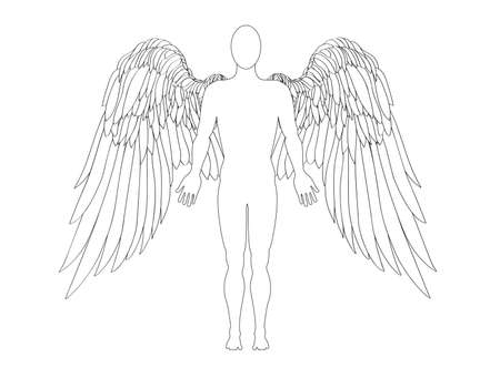 wings bird: figure of an angel. Vector illustration. Black and white graphic style