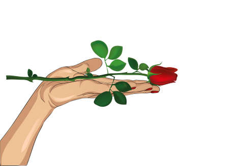 Flower red rose in his hand. Hand hands it to you. Present day Valenitina or Birthday. Greeting card with empty space for your text o radvertising. Vector illustration isolated on white background Illustration