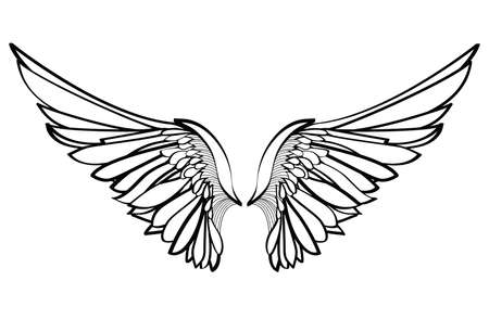 Wings Vector illustration on white background Black and white style Vectores