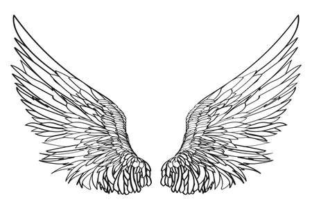 Wings Vector illustration on white background Black and white style Çizim