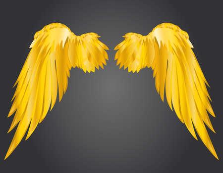 two birds: Wings. Vector illustration on dark background. Golden metal