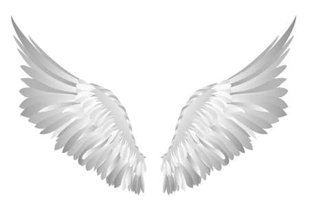 Wings icon. Illustration