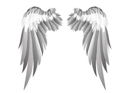 Grey wings illustration. Illustration