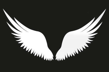 White Wings vector illustration on black background.