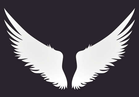 Wings. Vector illustration on white background. Black and white style Illustration