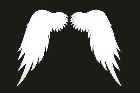 White Wings. Vector illustration on black background. Illustration