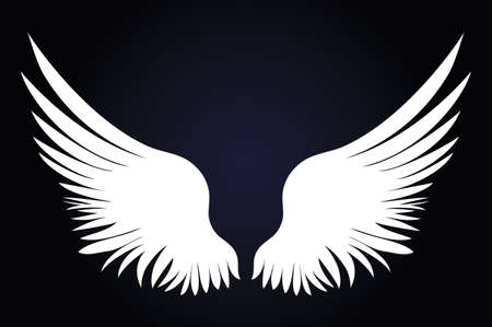White Wings. Vector illustration on dark background. Black and white style. Illustration