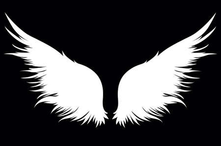 White wings in black illustration. Illustration