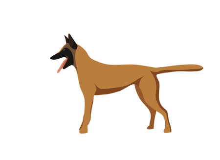 Silhouetted dogs. Belgian Shepherd Dog Malinois. Symbol of the year 2018. Vector.