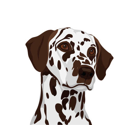 Dalmatian dog. Symbol of the year 2018. Vector. Illustration