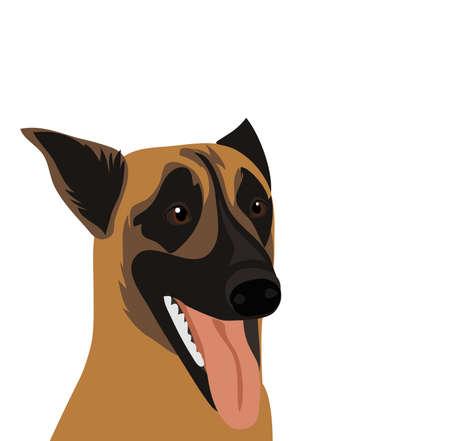 Belgian Shepherd Dog Malinois. Symbol of the year 2018. Vector. Illustration
