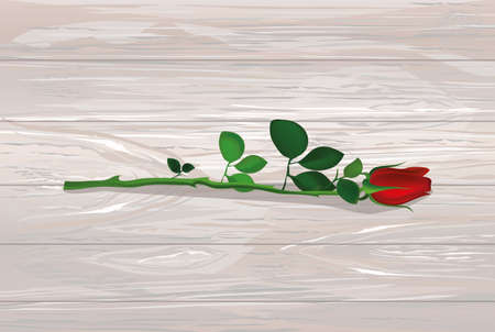 One red flower. Rose lies. Greeting card for Valentines Day wedding and birthday. Empty space for your text or advertisement. Vector illustration on wooden background.