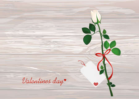 One white flower with red bow and ribbon and with empty blank card for message or text. Rose. Greeting card for Valentines Day wedding and birthday. Empty space for your text or advertisement. Vector illustration on wooden background.