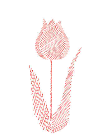 Drawn by hand. Line in the shape of a tulip flower. Vector on white background. Isolated. Greeting card for the holiday. Free space for text