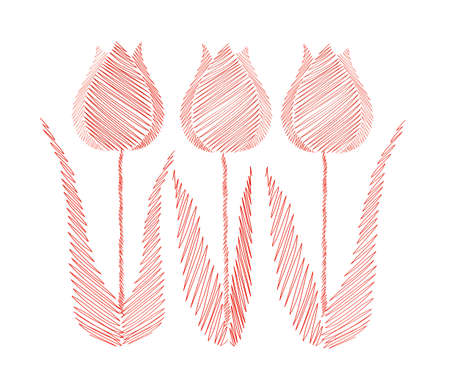 Drawn by hand. Line in the shape of a tulips flowers. Vector on white background. Isolated. Greeting card for the holiday. Free space for text