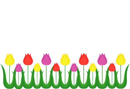 Multicolored tulips. Set. Vector on white background. Isolated. Greeting card for the holiday. Free space for text