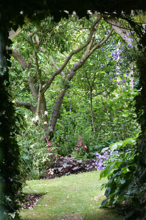 shady path leading into a secret garden full of flowers and a almond tree Stock Photo