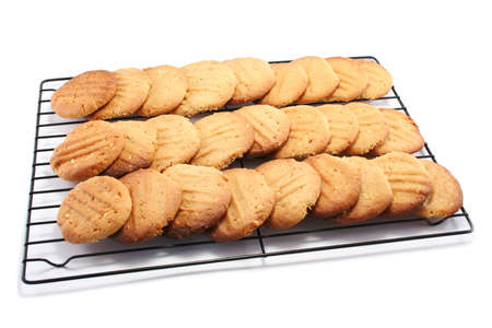 a large batch of homemade peanut butter cookies, cooling on a metal cooling rack Stock Photo - 4755804