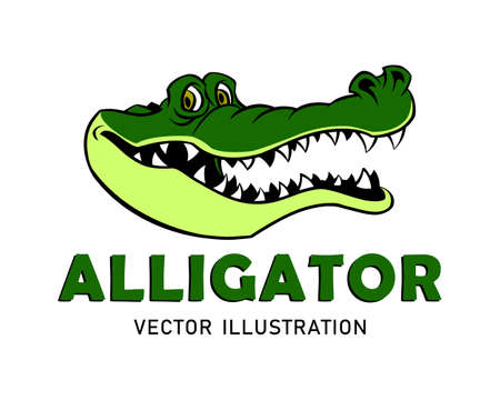 Cartoon Alligator Mascot 矢量图像