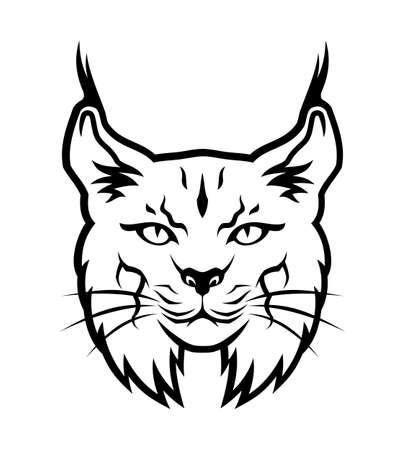 Vector illustration of bobcat head. Illustration