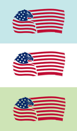 Vector illustration of US flag with eagle on various backgrounds