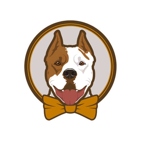 Pitbull boxer head dog mascot in bow-tie Çizim