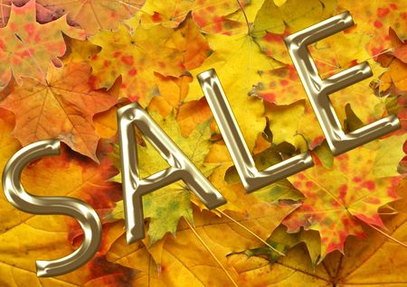 red autumn leaf background  for sale