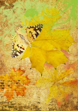 vellum: old vellum with butterfly and maple leafs