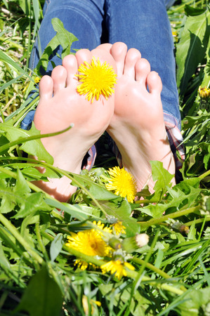 foot  lying on herb with yellow dandelion