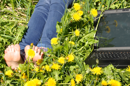 foot and notebook lying on herb with yellow dandelion