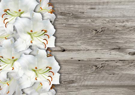 white lily on grey wood background grunge
