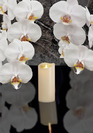 white orchid with candle on black background