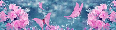 pink butterfly and pink flowers toned long