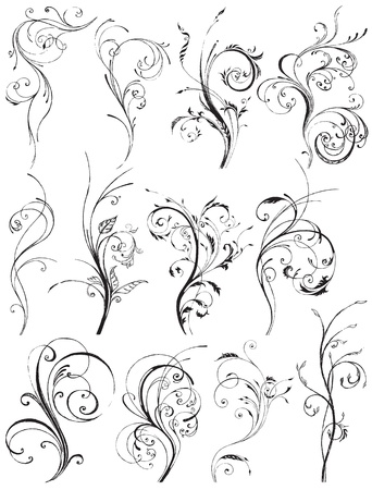 set of 12 floral design elements, vector Vector