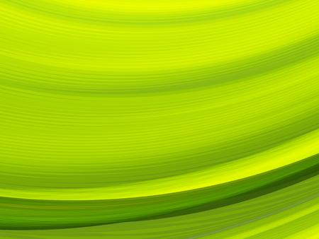 Lignes à rayures vectorielles. EPS10 avec transparence. Composition abstraite avec des lignes courbes. Lignes rayées pour l'arrière-plan du thème de l'écologie. Feuille abstraite, macro.