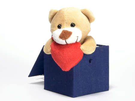 tare: Soft toy - bear. Sneaking from the blue box. The gift of Valentine `s Day. At a homogeneous background.