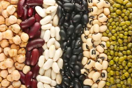 frijoles rojos: Las filas de frijoles diferentes: ri��n, mung, garbanzos, ojo morado, preto. Vista desde arriba.