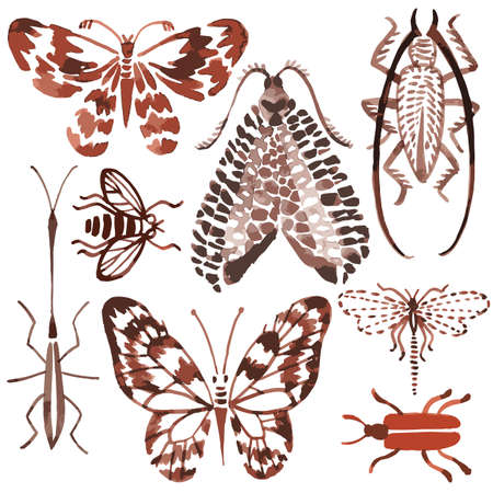 Vector seamless pattern made of watercolor insects. Hand drawn butterflies, beetles, dragonfly, bee. Watercolor texture. Backdrop for wallpaper, textiles, fabric, clothes, wrapper, surface.