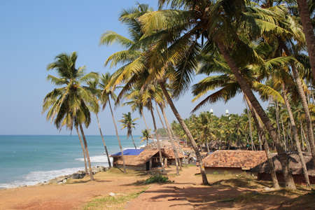 Beautiful view of fisherman s village on the Indian ocean coast with palms and huts photo