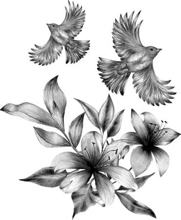 Monochrome floral bunch with bird.Line drawings, ink drawing, hand drawn illustration.You can use for the design of postcards, invitations, packages, banner, flyers, printing, etc Stock Illustratie