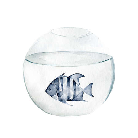 Aquarium, a realistic aquarium with fish and algae. Watercolor illustration of aquarium with fish isolated on white. Zdjęcie Seryjne - 128721725